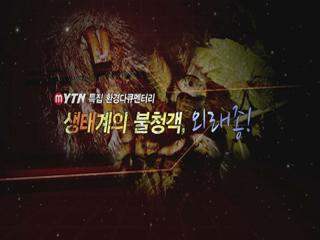 [MYTN 스페셜] 환경다큐 생태계의 불청객, 외래종 2부