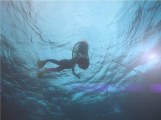 [MYTN 스페셜] 공존의 바다 3부 : 생명의 둥지, 문섬