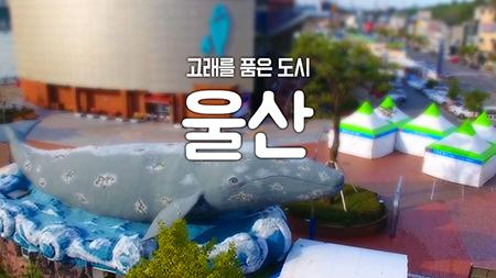 [구석구석 코리아] - 고래를 품은 도시, 울산